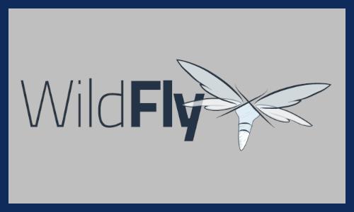 lodo wildfly